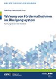Wirkung von Fördermaßnahmen im Übergangssystem - Forschungsstand, Kritik, Desiderata